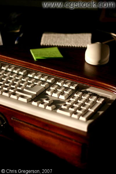 Computer Keyboard and Mouse on Wooden Desk