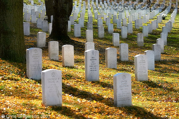 Tombstones in Fall at Arlington National Cemetery
