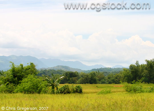 Farm Fields and Mountains of Ilocos Norte, the Philippines