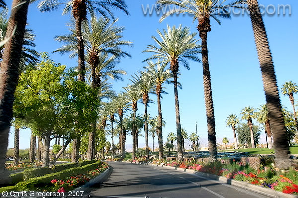 Entrance to the Marriott Desert Springs, Palm Desert, California