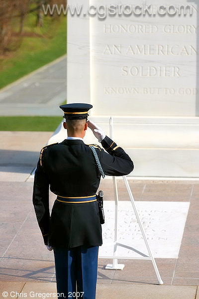 An Army Officer Salutes the Tomb of the Unknown Soldier