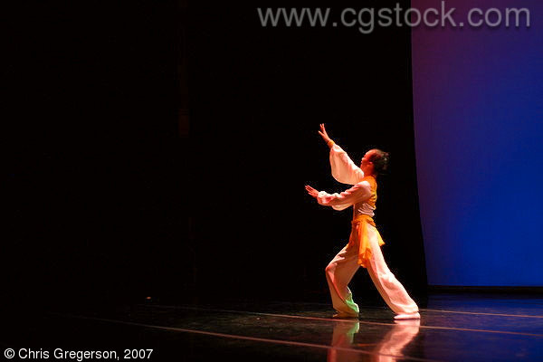 A Performer from RFDZ in China on Stage in Minnesota