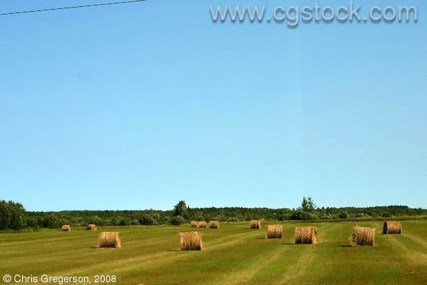 Hay Fields on the way to Kenora, Ontario