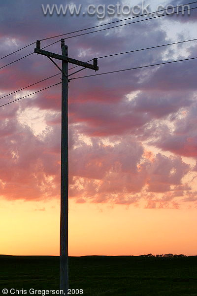 Telephone Pole in Silhouette