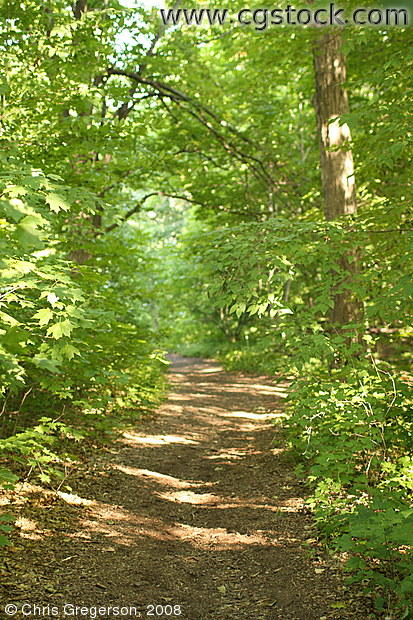 Hiking Path, Minnesota Landscape Arboretum
