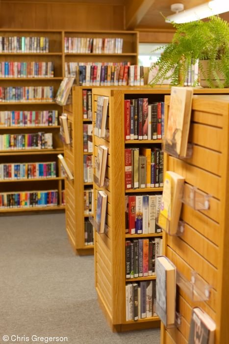 Bookshelves and Isles, Friday Library, New Richmond