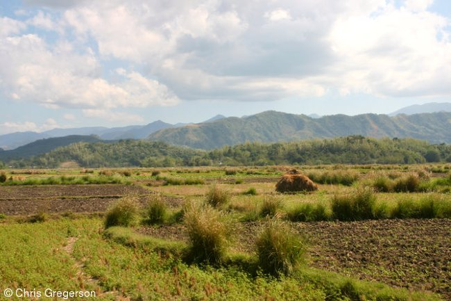 Farm Fields in Badoc, Ilocos Norte, the Philippines