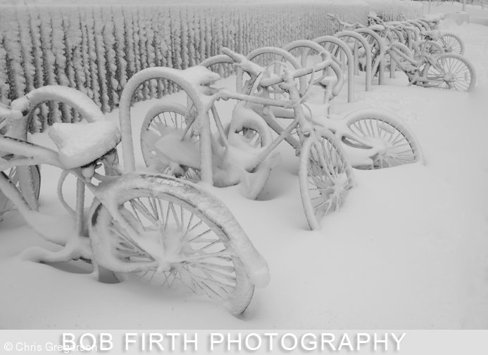Bikes Blanketed in Snow at the U of M